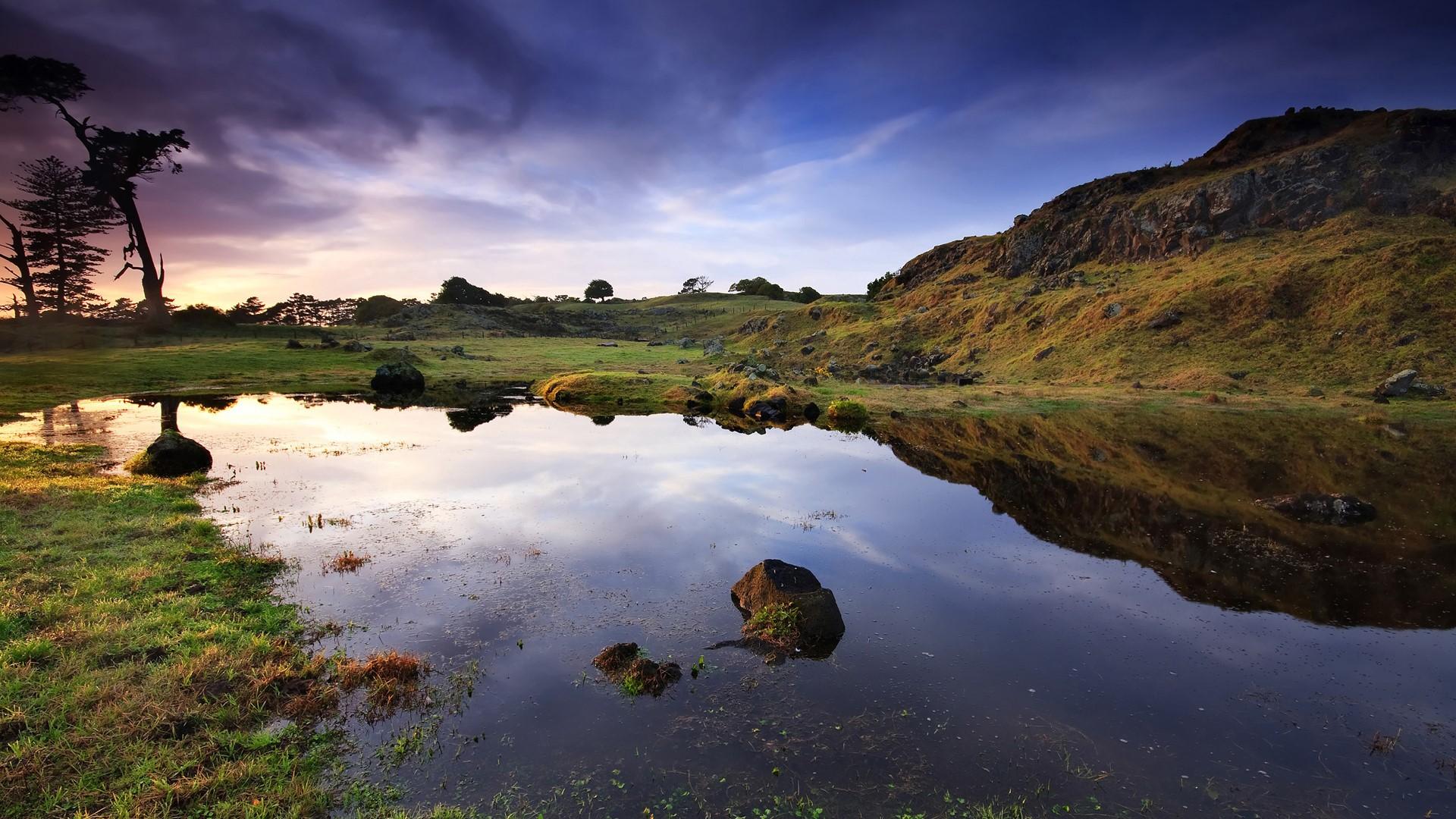Landscape 15