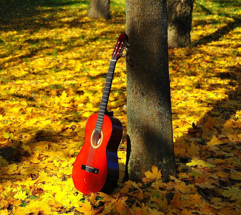 Autumn Red Guitar wallpaper 9679325