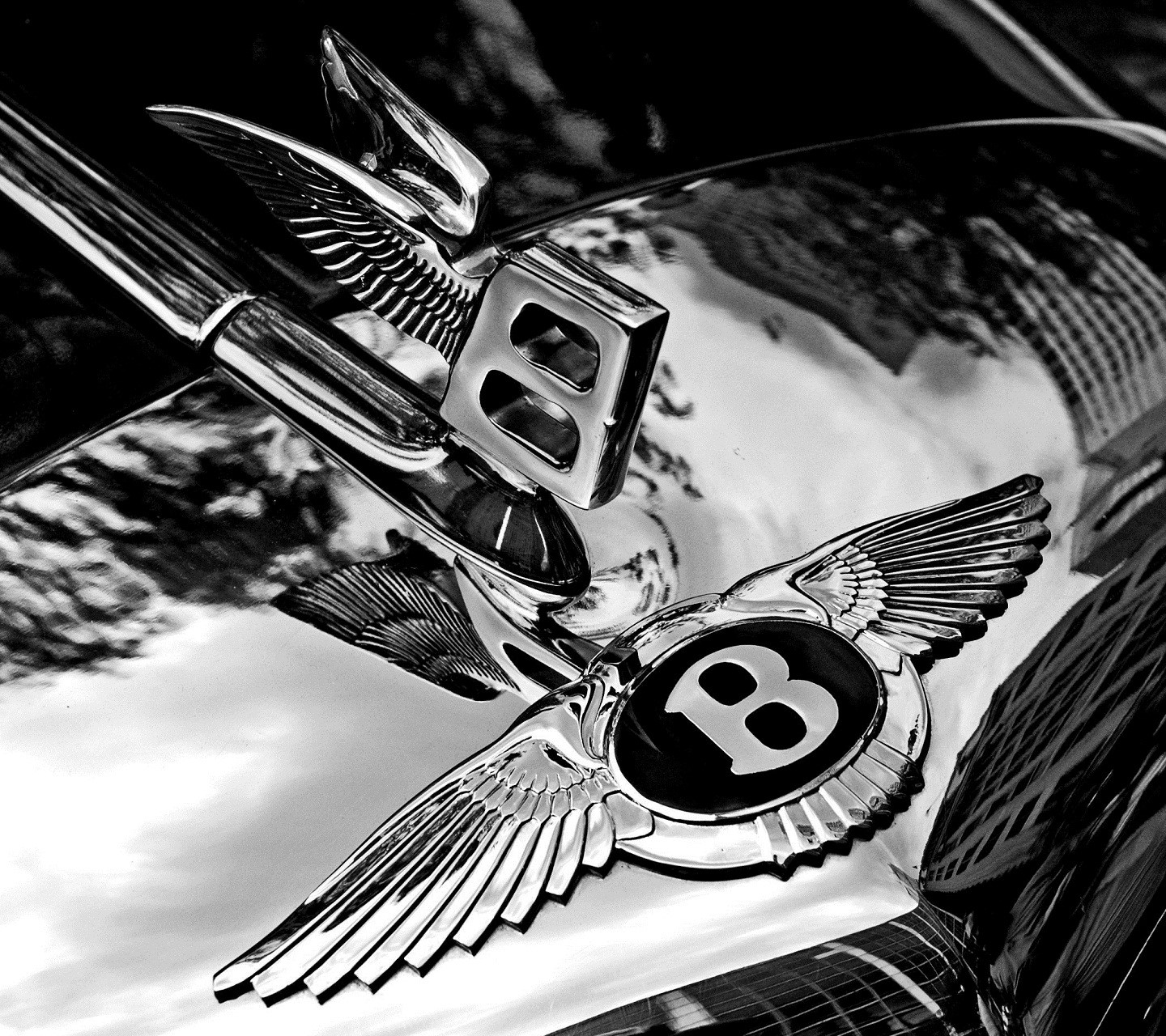 Bentley Badge Hood wallpaper 10150702