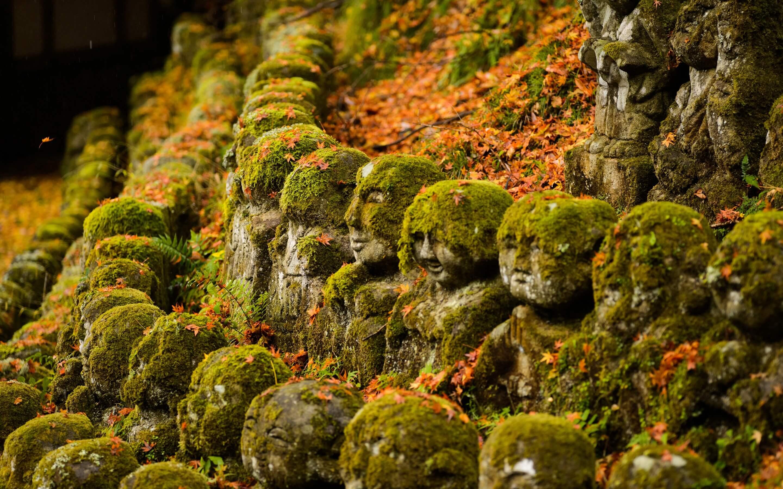 HD Nature - Landscape Wallpapers 7