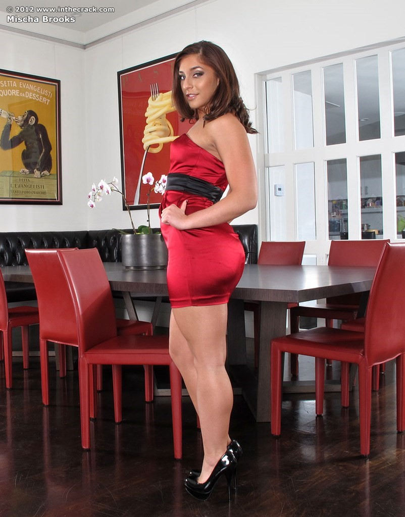 Mischa Brooks Red Dress