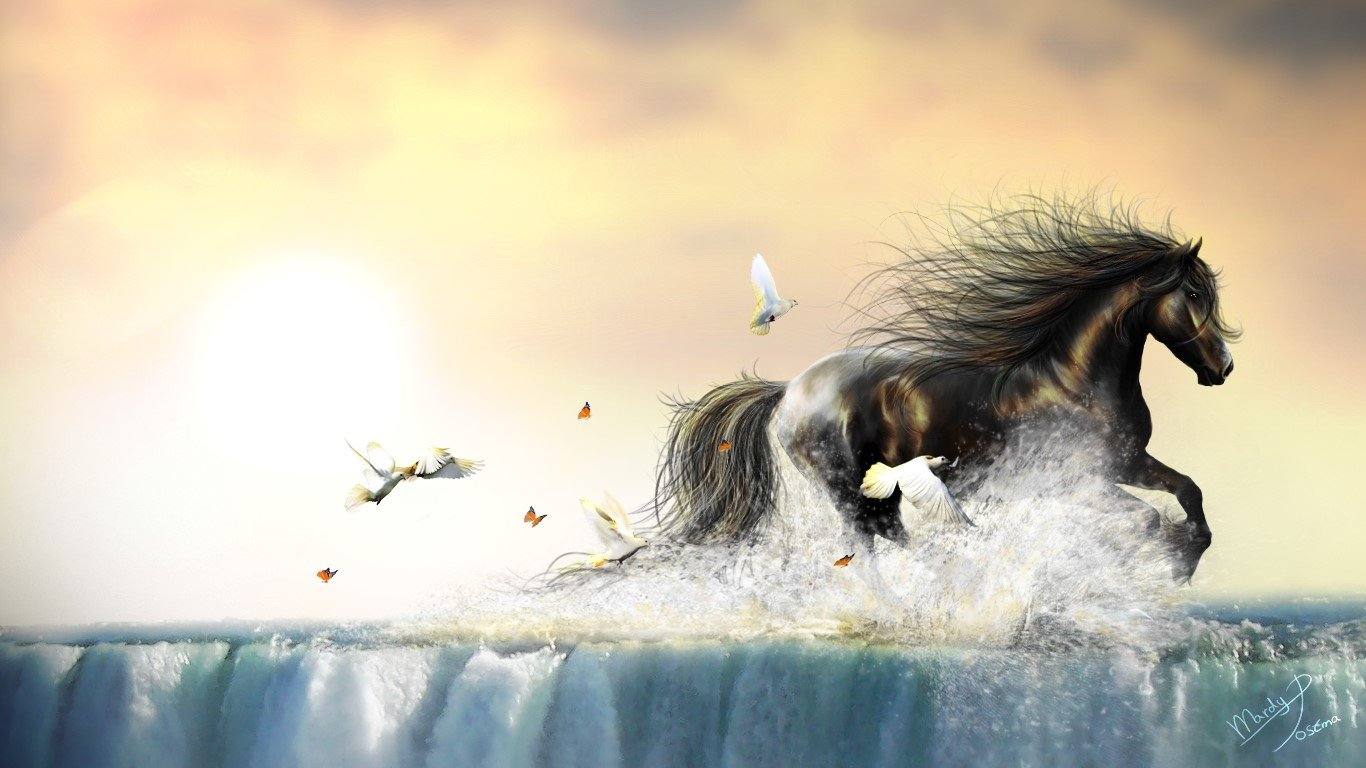 Horse Computer Wallpapers