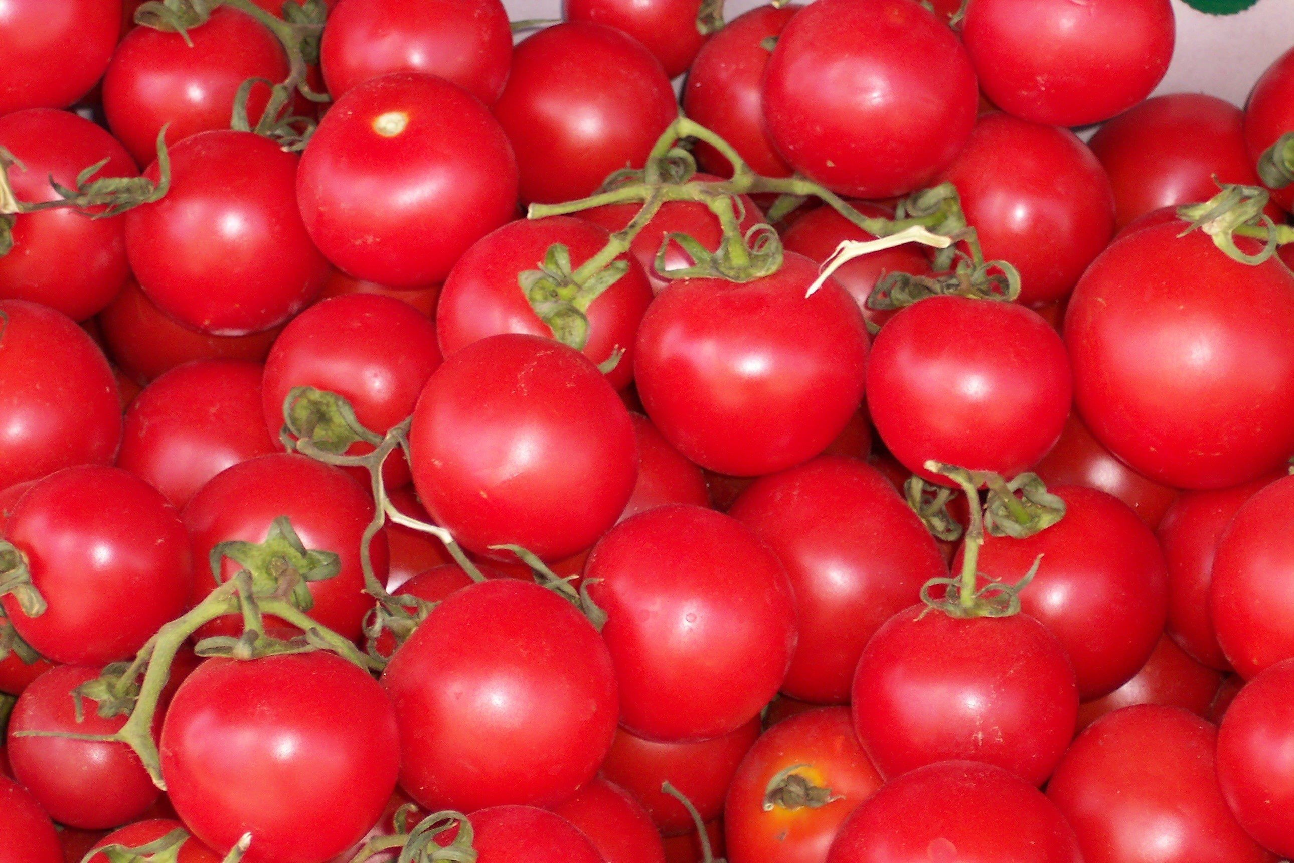 Tomato HD Photos