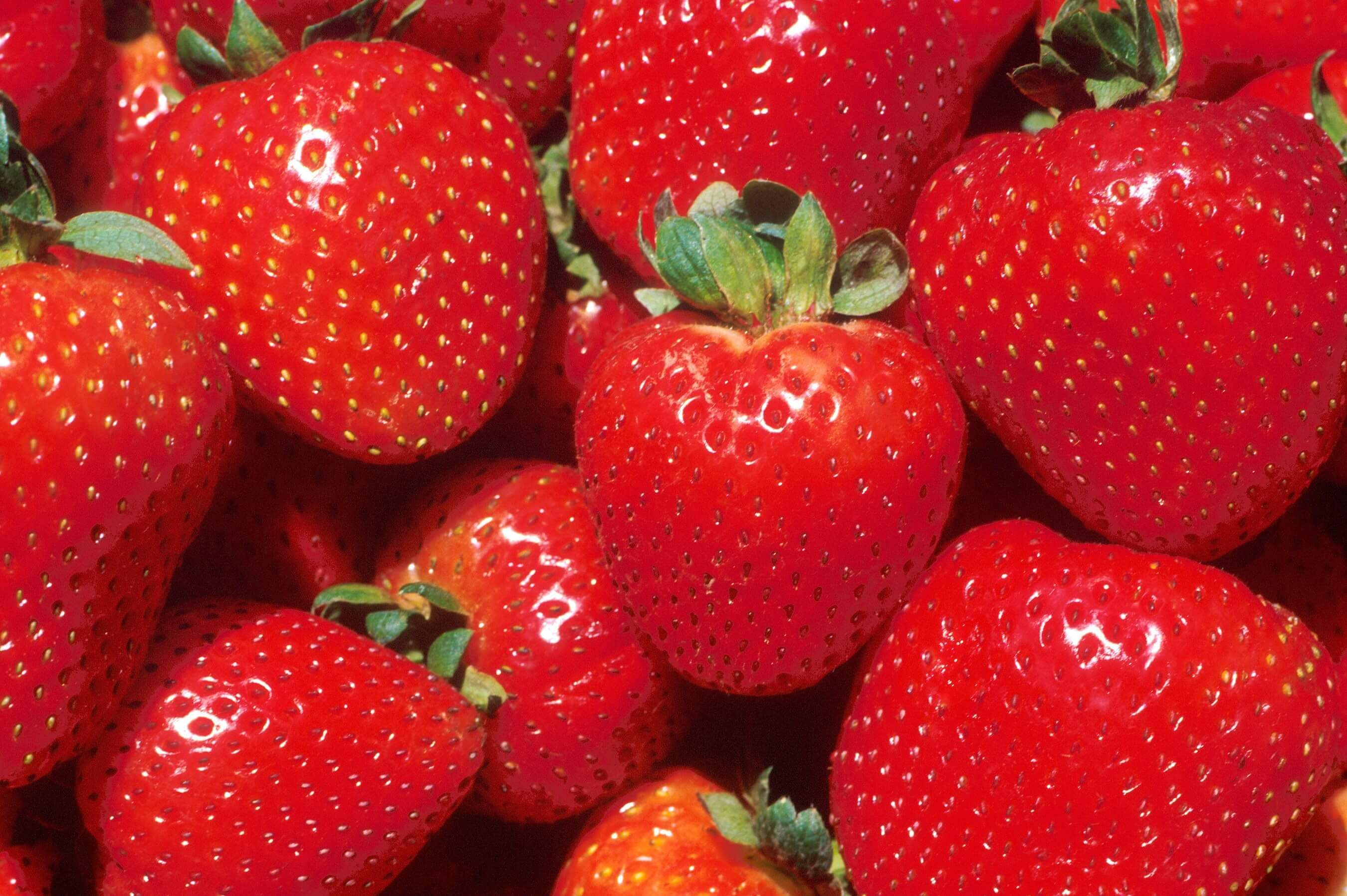 Strawberry HD
