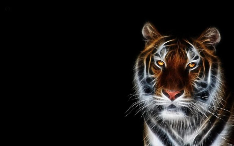 Tiger Wallpapers 2