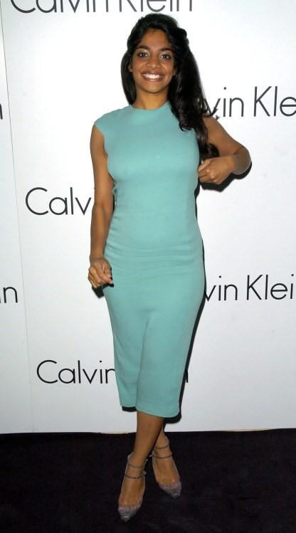Amara Karan Blue Dress