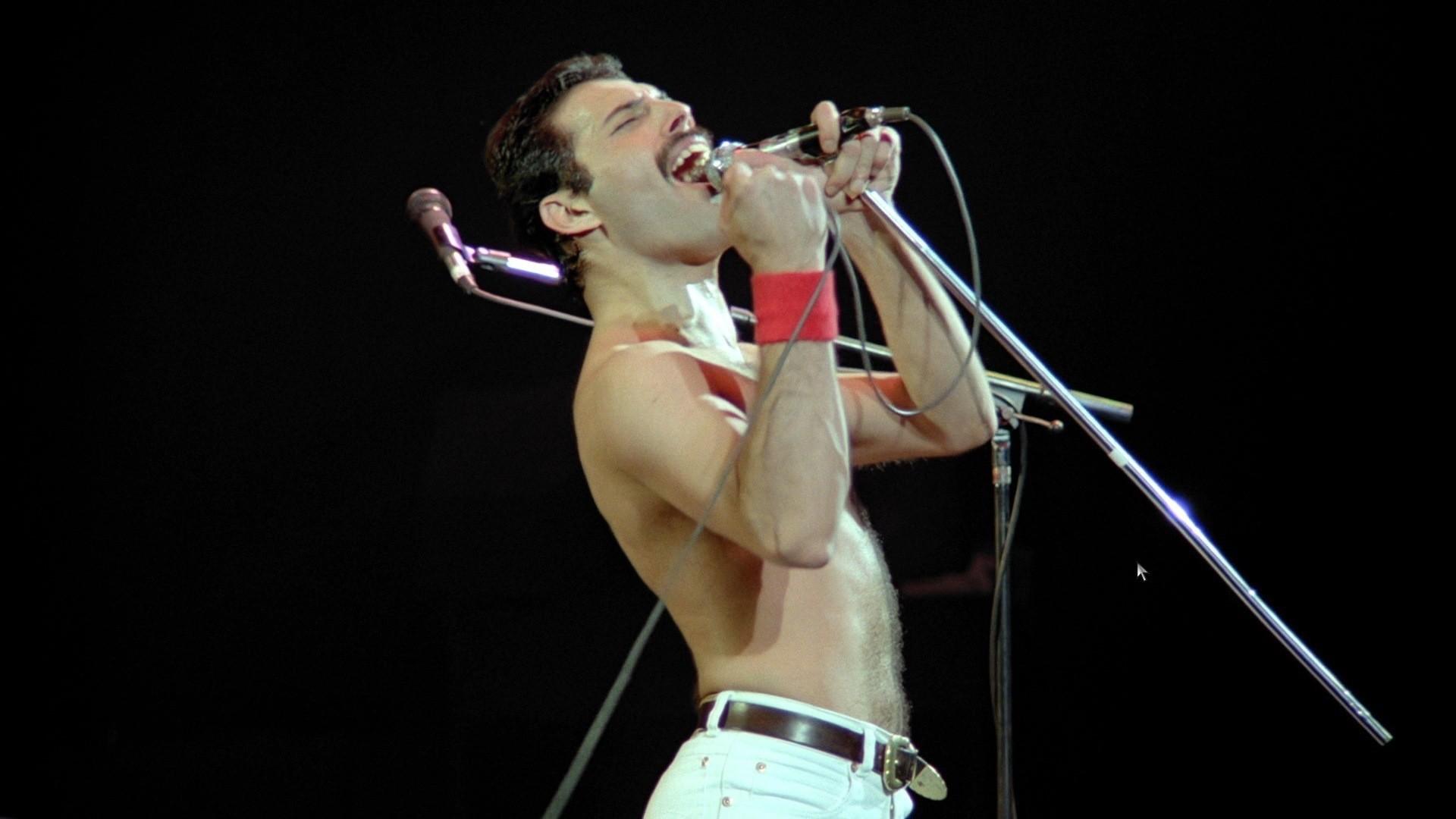 Freddie Mercury 7