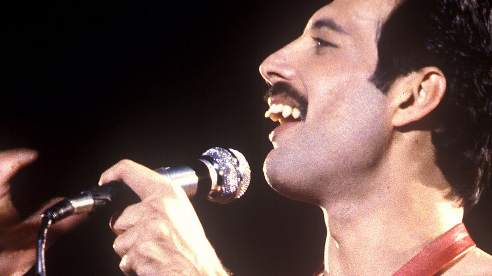 Freddie Mercury Desktop