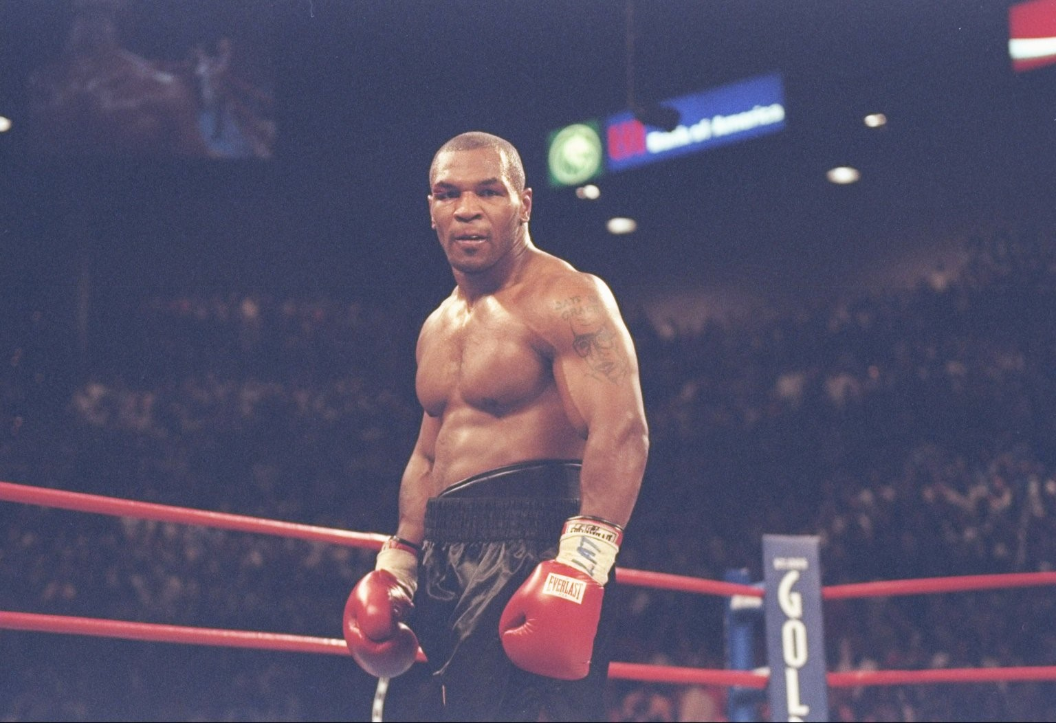 Mike Tyson Wallpapers 5