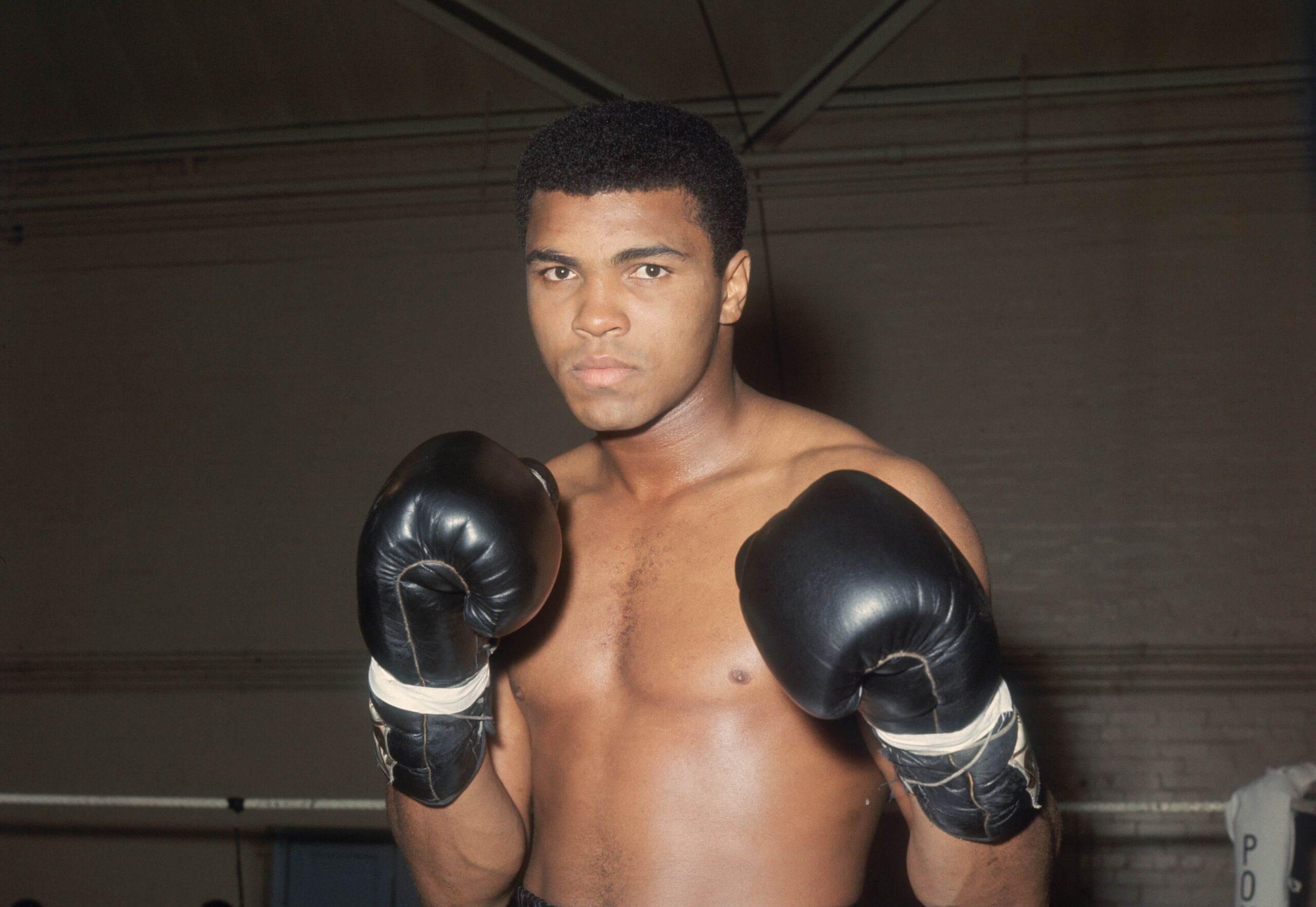 Muhammad Ali Desktop