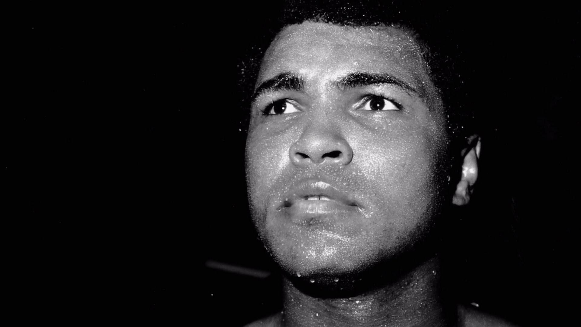 Muhammad Ali Gallery