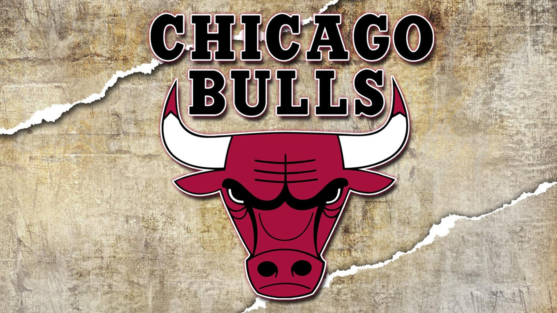 Pictures of Chicago Bulls