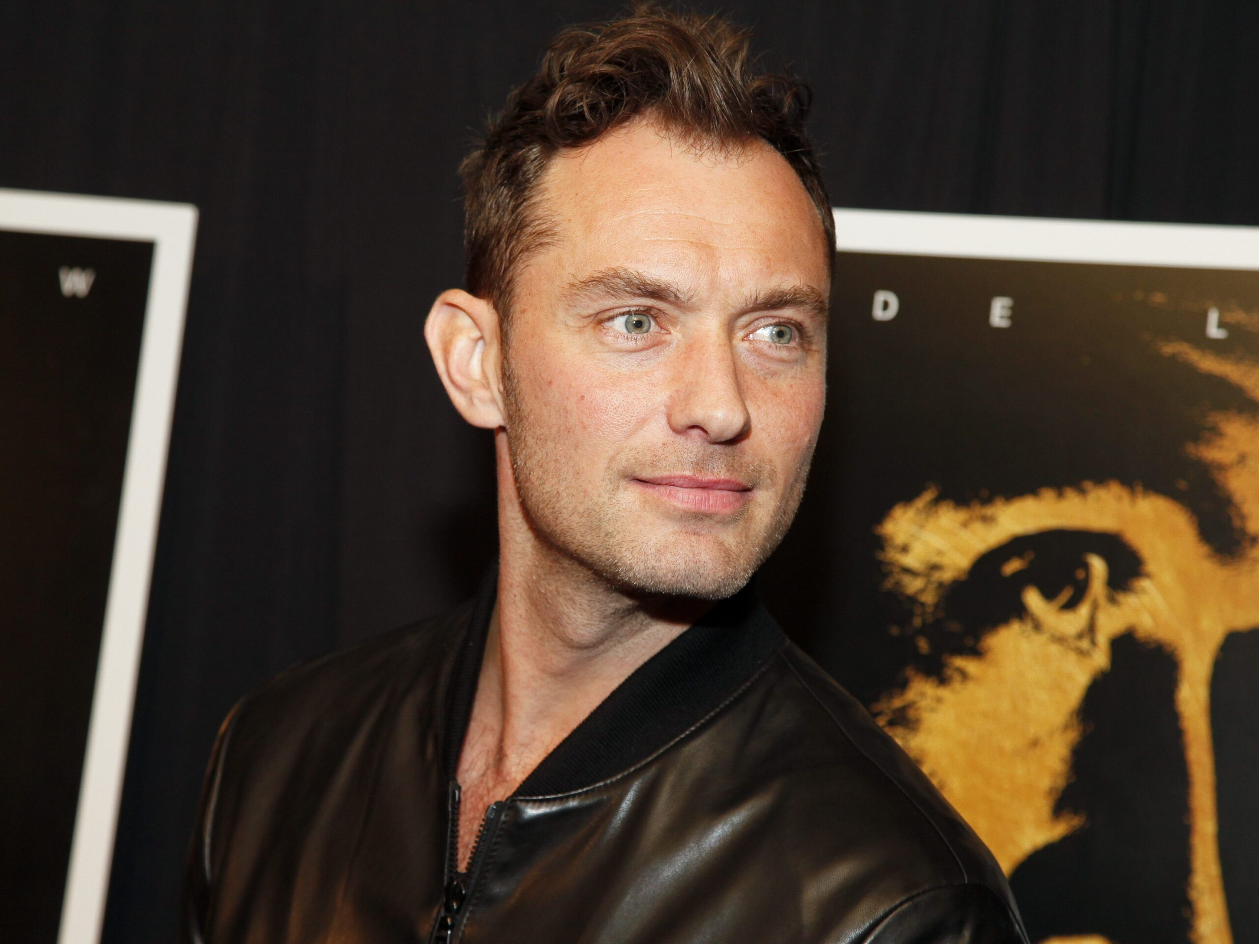 Jude Law Windows Wallpapers